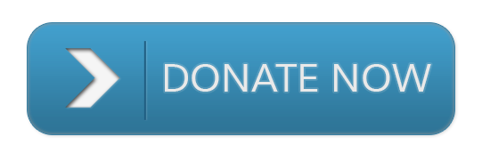 blue%20donate%20now